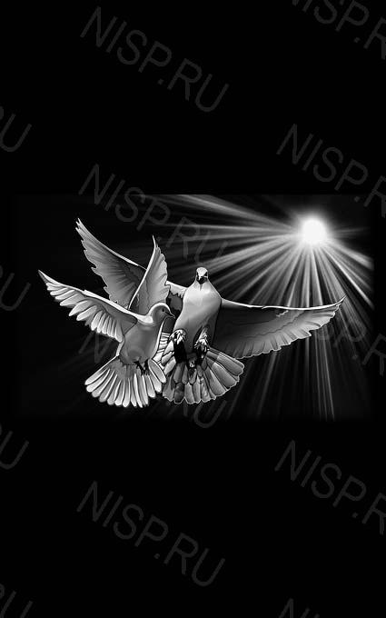 ваш любимый картинка на обороте памятника жизнь человека увлекавшегося голубями традиционной китайской